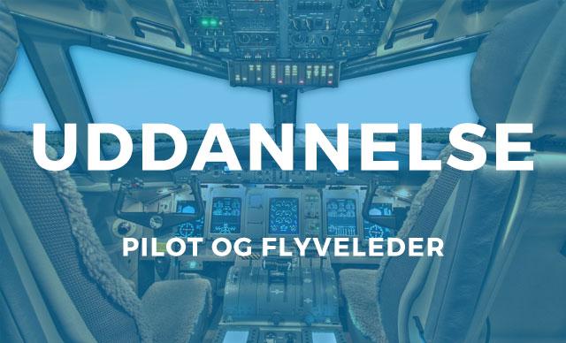 bliv-pilot